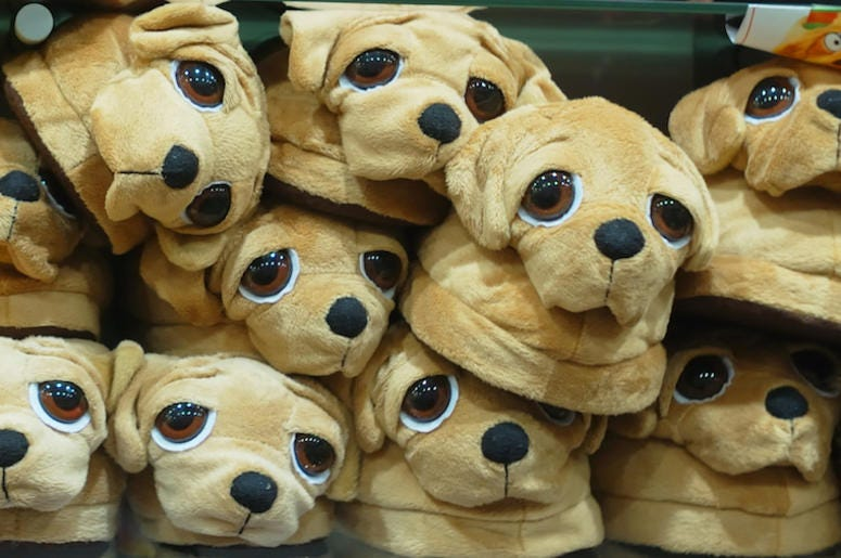 Dog Slippers, Pet, House Shoes, Shop