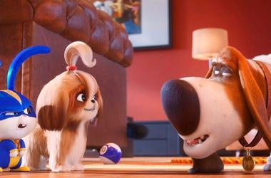 """The Secret Life of Pets 2."""
