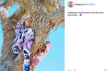 Miley Cyrus in a Joshua Tree.