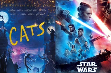 Cats Star Wars Rise of Skywalker