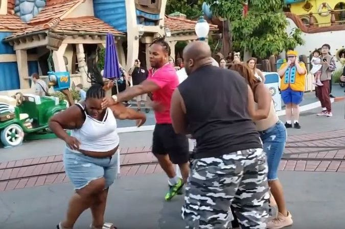 Security Lags as Violent Brawl Breaks Out In 'Happiest Place on Earth'