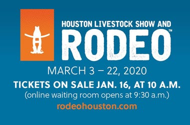 Rodeo DL