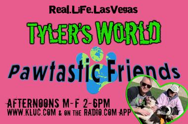 Saving Dogs With Tyler FoxXx & Pawtastic Friends