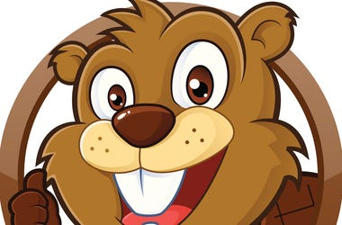 cartoon_beaver