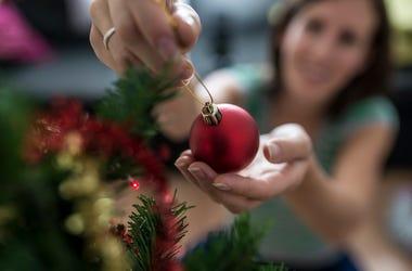 Christmas Tree, Decorating, Decoration, Ornament, Christmas, Tree