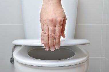Toilet, Man, Closing Lid, Bowl
