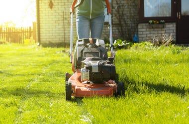 Mowing Grass, Lawnmower, Yard, House, Backyard, Mowing