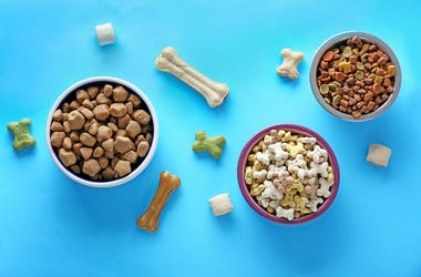 Bowls with pet food on color background