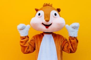 Squirrel, Costume, Paws Up, Orange Background