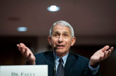 Dr. Anthony Fauci, director of the National Institute of Allergy and Infectious Diseases, speaks during a Senate Health, Education, Labor and Pensions Committee hearing