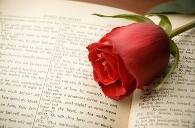 Rose on Romeo & Juliet book