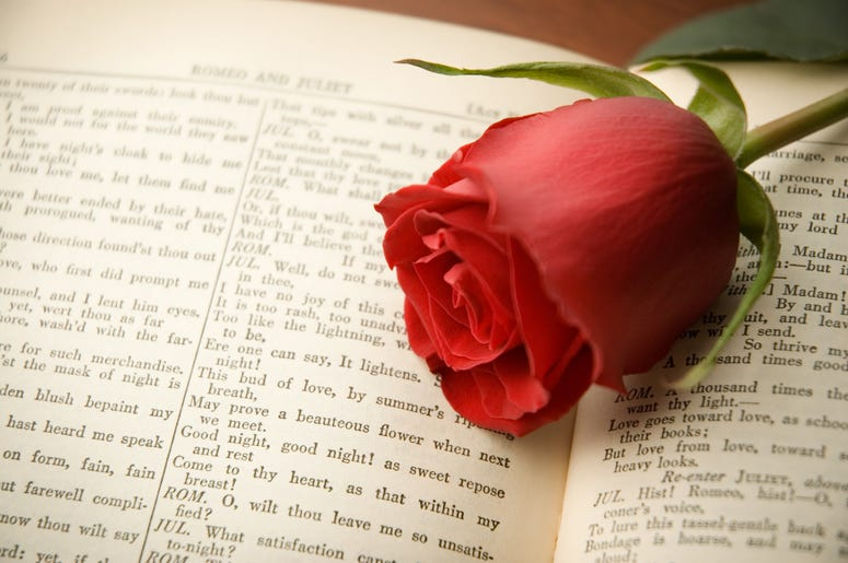 Rose on Romeo & Juliet book