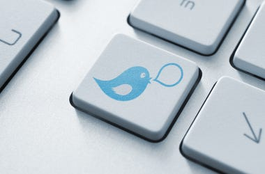Blue bird with speech bubble on keyboard button. Social media concept.