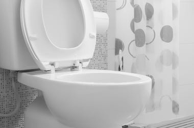 Bathroom, Toilet Seat, Up