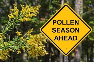 Polllen Season Ahead Warning Caution Sign - Pollen Season Ahead