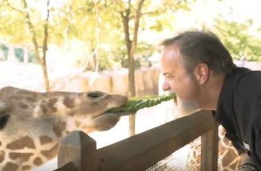 jody_dean_giraffe