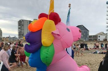 Unicorn Costume, 25th Annual Penguin Swim, Beach, Pink Unicorn, 2019