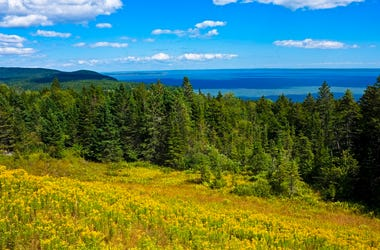 bay_of_fundy