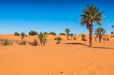 Sand Dunes of Erg Chebbi in the Sahara Desert