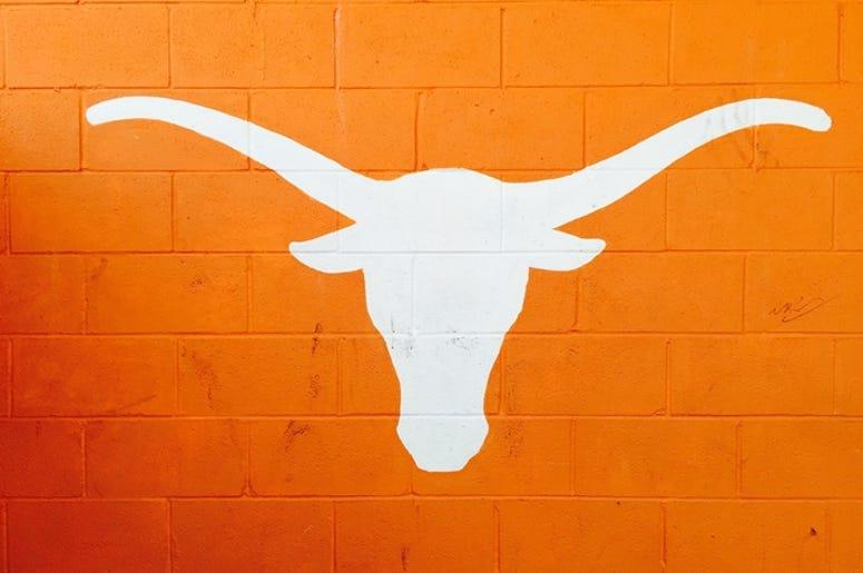 University of Texas Longhorn in Burnt Orange.