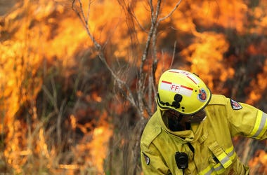 Firefighter, Australia, New South Wales, Bushfire, Trees, Forest, Fire, 2019