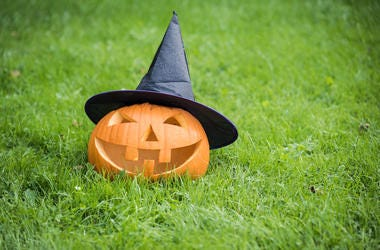 Halloween, Pumpkin, Lawn, Witch Hat, Jack-O-Lantern