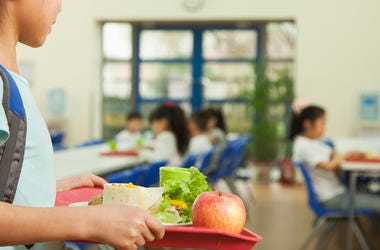 Lunch, Girl, Student, School, Cafeteria