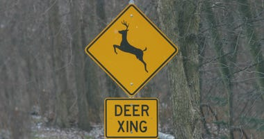 A deer crossing road sign