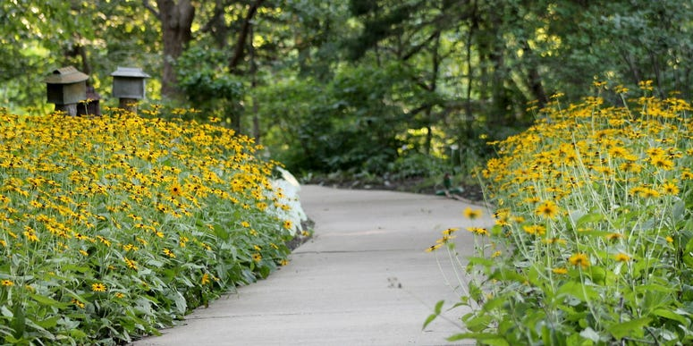 Walkway at the Overland Park Arboretum, surrounded by beds of flowers