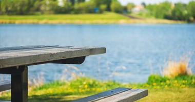 Park bench beside a lake on a sunny day