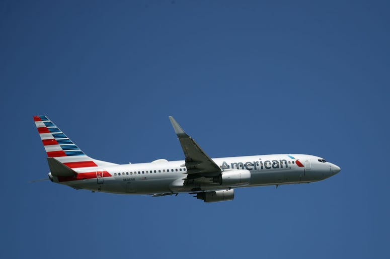 Horse Joined Owner On Flight From Chicago, horse on american airlines, american airlines