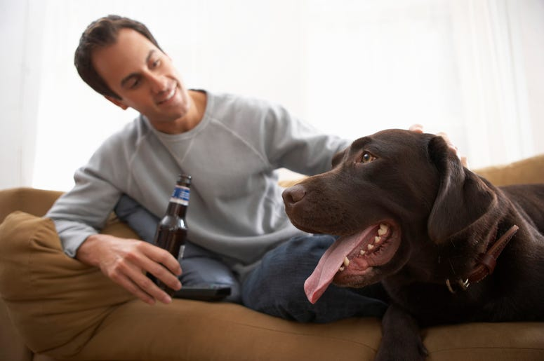 coors light, coors light will pay adoption free for dog, coors light valentine's day promotion