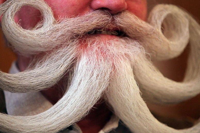 Blue Ribbon Beard Bonaza, beard competition, beard championships