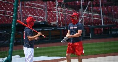Cardinals with masks