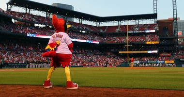 The St. Louis Cardinals mascot Fredbird standing for the national anthem at Busch Stadium.
