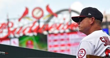 St. Louis Cardinals manager Mike Shildt.