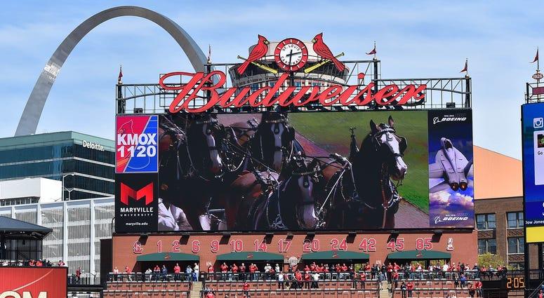 Budweiser Busch Stadium St. Louis