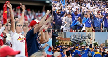 fans, sports, St. Louis, Cardinals, Blues, battlehawks