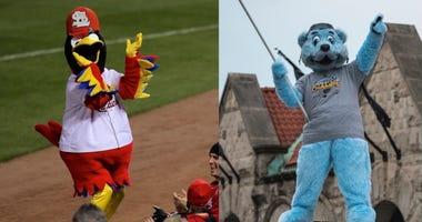 Blues, Cardinals