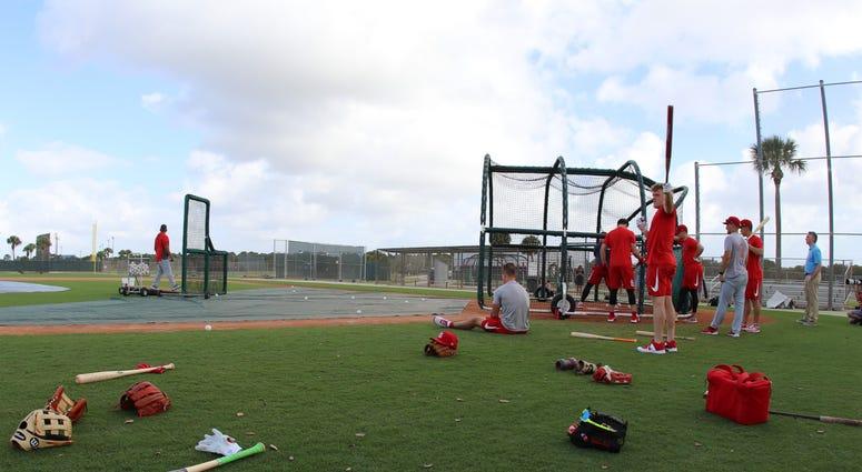 Cardinals, spring training