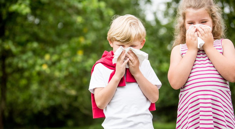 Children with hay fever or allergy at the park sneezing and using tissue