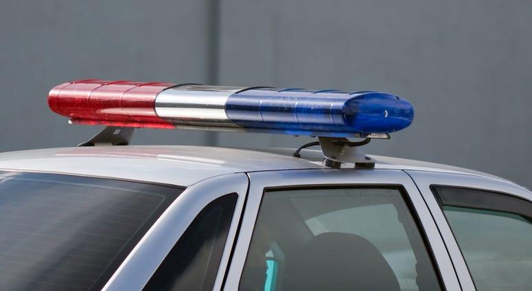 Police cop officer law emergency service car siren