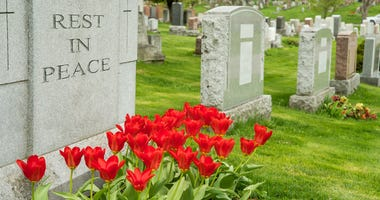 Headstones in a cemetery with red tulips and rest in peace inscription.