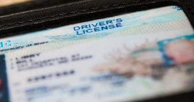 a drivers license in a wallet