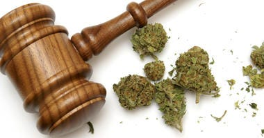 Marijuana and a gavel together for many legal concepts on the drug.