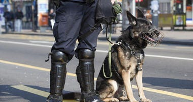 A policeman with his police dog