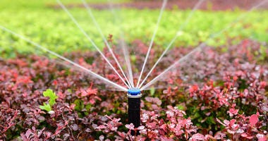 outdoor sprinkler system waters a flowerbed