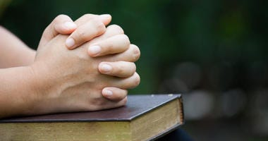 Woman hands folded in prayer on a Holy Bible for faith concept in nature green background