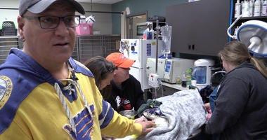 Stray Rescue founder Randy Grim