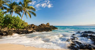 Beach in makena cove with palm tree and waves in south maui, hawaii